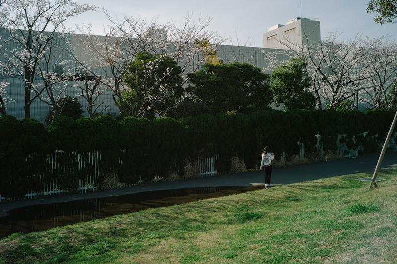 L1009444.jpg