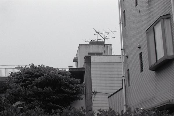 L2092.jpg