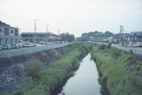 L2316.jpg