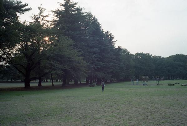 L2586.jpg