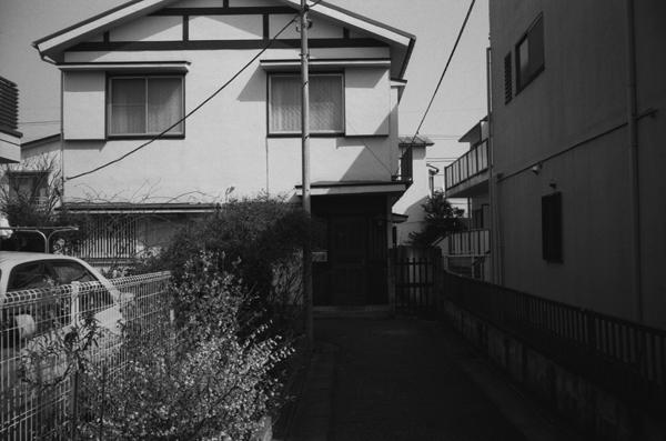 freehouse2.jpg