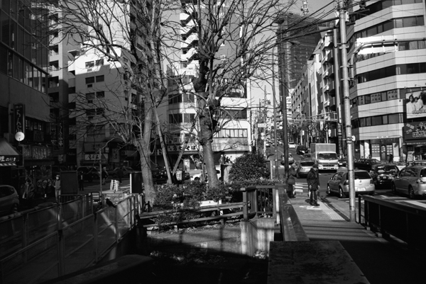 namikibashi.jpg